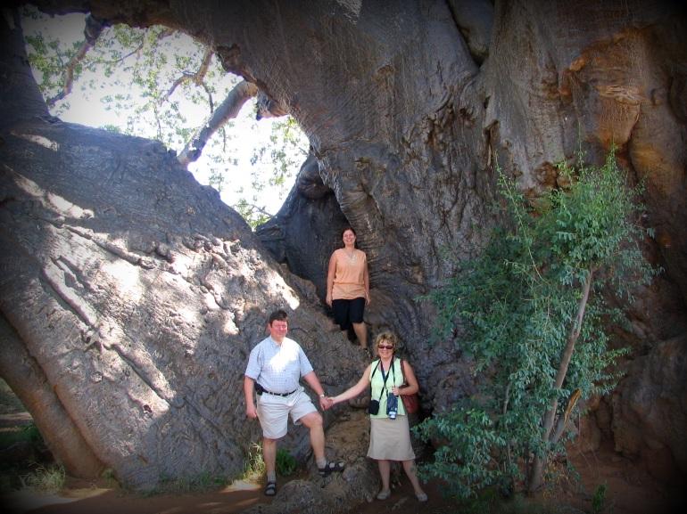 baobabeltern