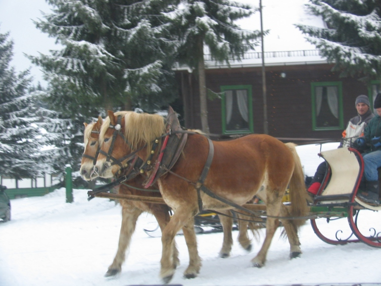 No winter romance is complete without a sleigh ride