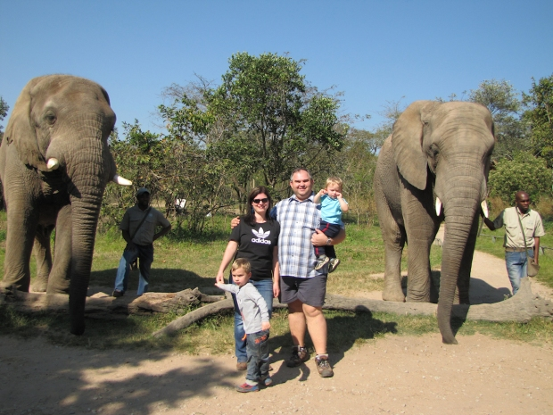 elefants7