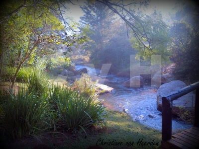 Sabie Star's property is really stunning. A great place to enjoy a steaming early morning pot of coffee!
